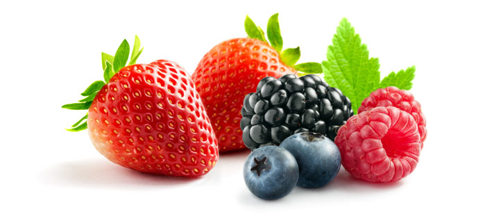 Fresh berries-wiz wordpress theme-nutrition demo