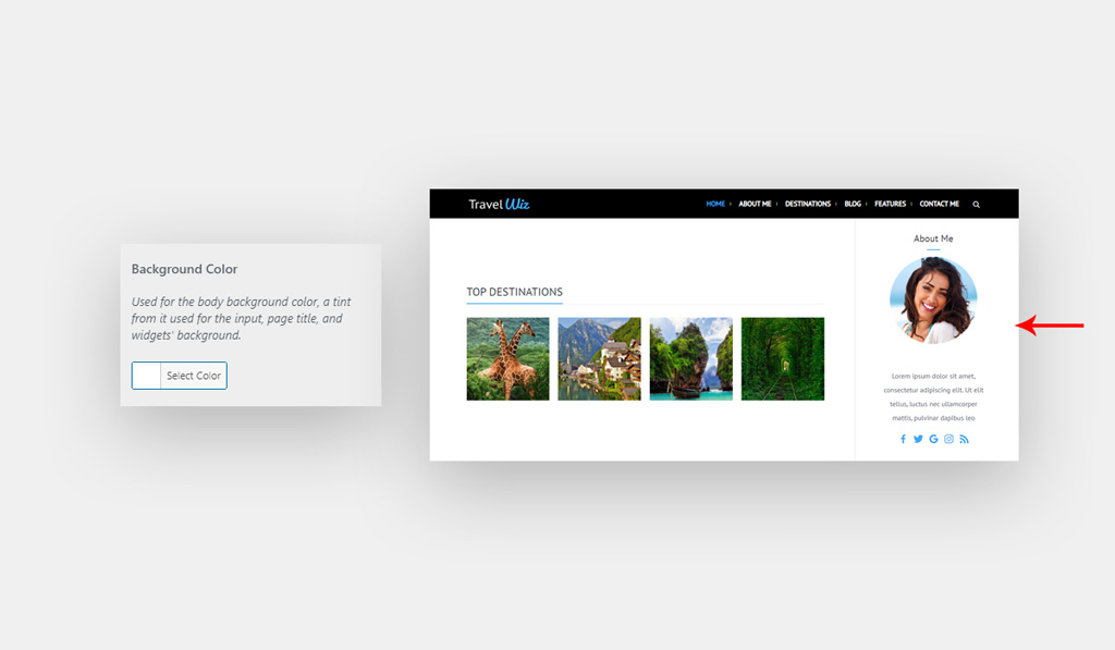 Background Color for Wiz WordPress Theme