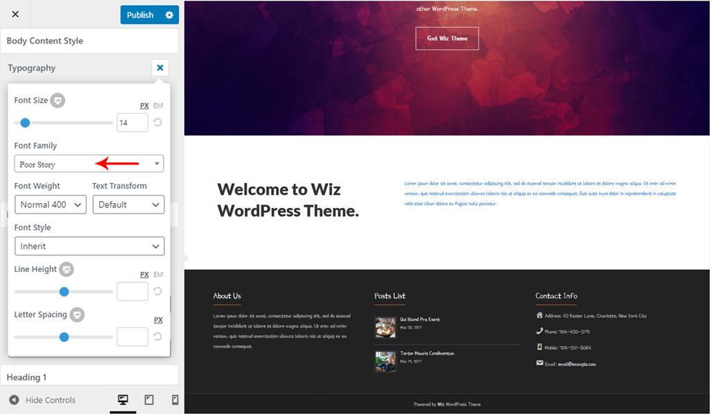 Body Font Style for Wiz WordPress Theme