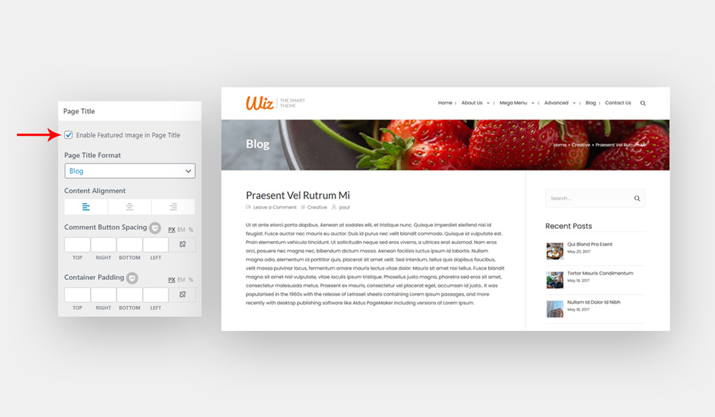 Set Featured Image As Background for Page title in Wiz WordPress Theme