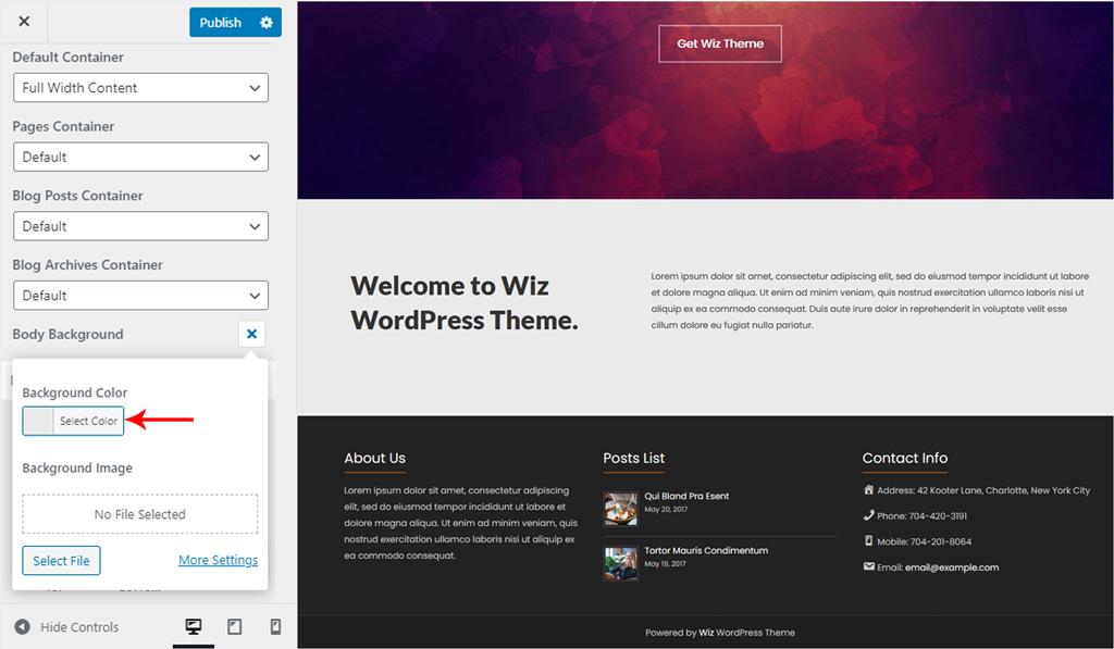 Container Body Background for Wiz WordPress Theme