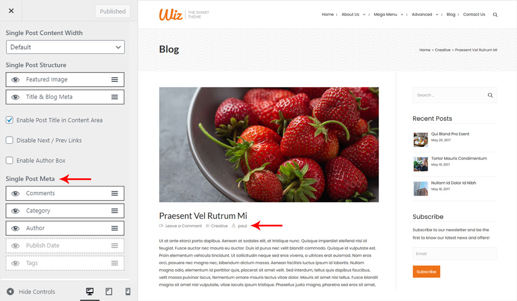 Single Post Meta Data for Wiz WordPress Theme