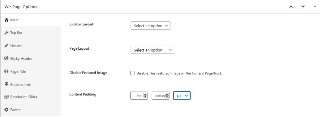 Main Page Options in Wiz WordPress Theme Page Options