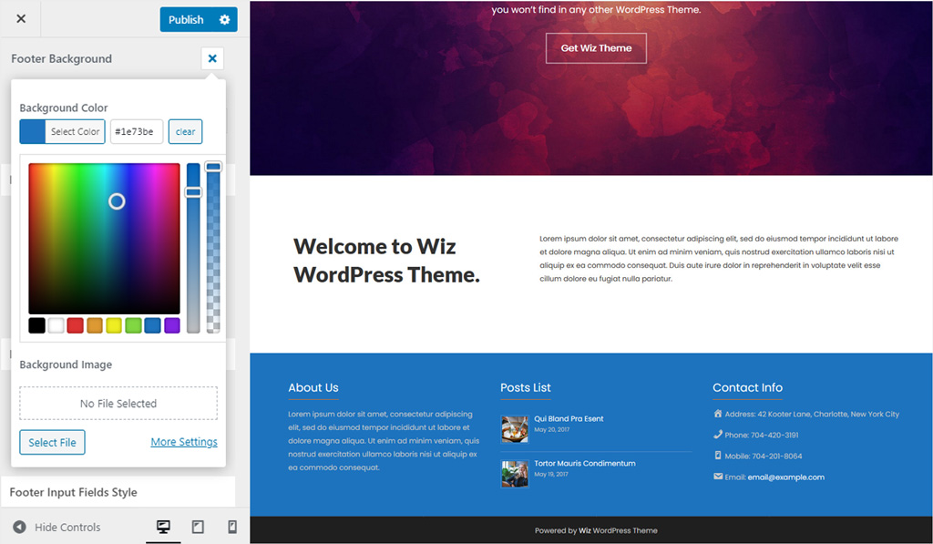 Footer Background Color in Wiz WordPress Theme