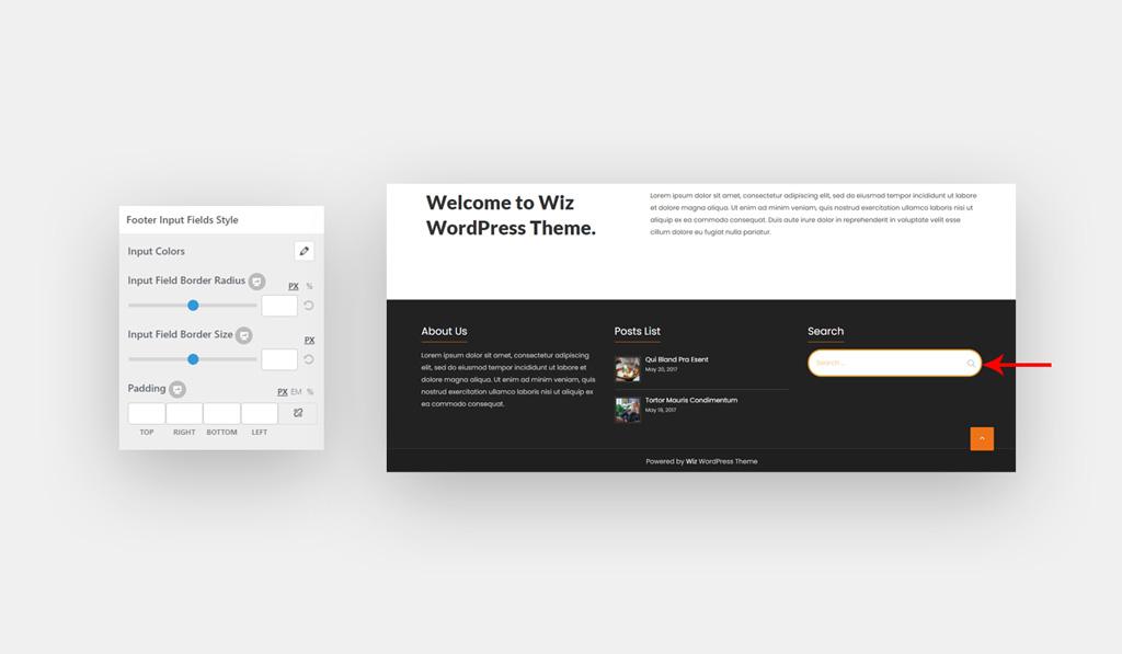 Footer Input Style for Wiz WordPress Theme