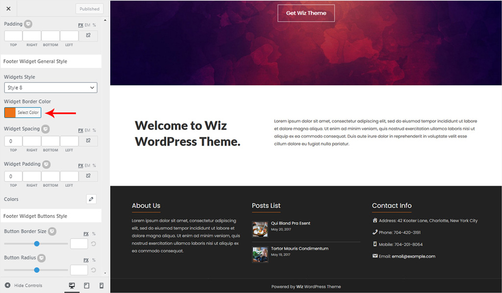 Footer Widget General Settings for Wiz WordPress Theme
